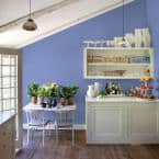 Ppg Diamond 1 Gal Ppg1245 5 Blue Hyacinth Flat Interior Paint With Primer Ppg1245 5d 01f The Home Depot