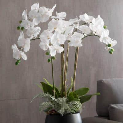 35 in. White Orchid Magnificent Five Stemmed Orchid Shown In Full Bloom this Artificial Gem Sits in Circular Pot