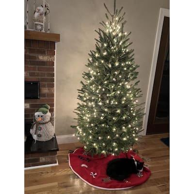 5 ft. to 5.5 ft. Freshly Cut Fraser Fir Live Christmas Tree