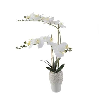 20 in. Real-Touch Artificial White Orchid in 5 in. X 8 in. Ceramic Vase