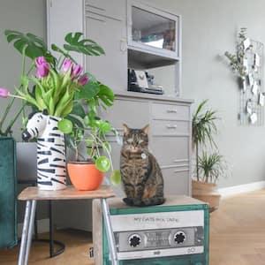 Emerald Mix Tape Cardboard Cat Scratcher