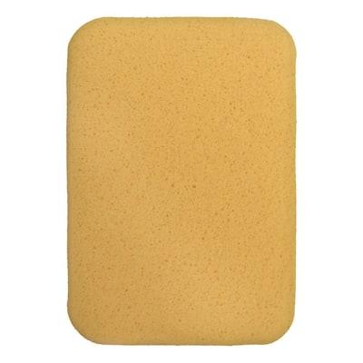 All-Purpose Sponge (2-Pack)