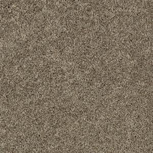 Lifeproof Gorrono Ranch Ii Color Category Texture 12 Ft Carpet 0544d 29 12 The Home Depot