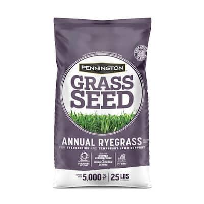 25 lb. Annual Ryegrass Grass Seed