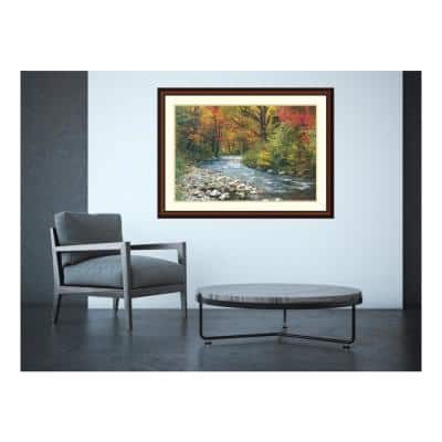43 in. W x 32 in. H 'Forest Creek (i)' Printed Framed Wall Art