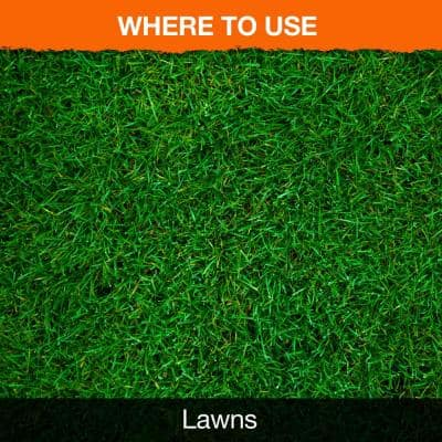 Roundup for Lawns Ready-to-Spray 32 oz. (Southern)