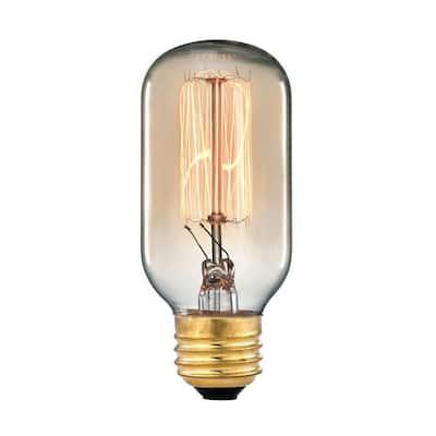 Ogden Collection 60-Watt Incandescent T6 Medium Base Vintage Filament Light Bulb