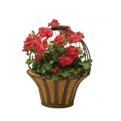 Solera 15 in. Round Metal Basket with Coco Liner