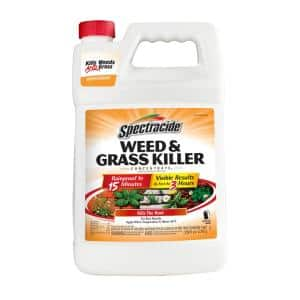 1 Gal. Concentrate Weed and Grass Killer