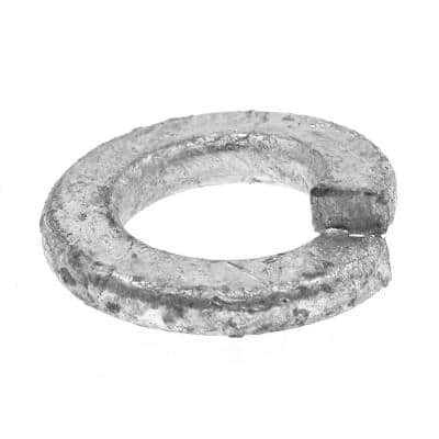 5/16 in. Hot Dip Galvanized Steel Medium Split Lock Washers (100-Pack)
