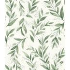 Olive Branch Floral Paper Pre-Pasted Strippable Wallpaper Roll (Covers 56 Sq. Ft.)