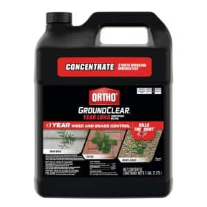 GroundClear 2 Gal. Year Long Vegetation Killer Concentrate