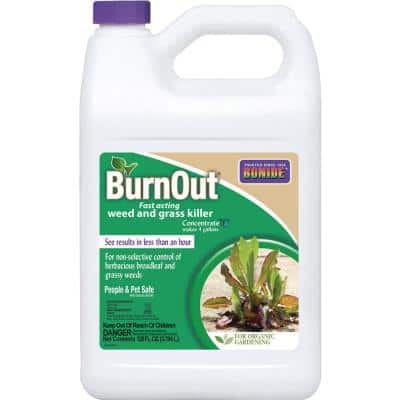 1 Gal. BurnOut Fast-Acting Weed and Grass Killer Concentrate