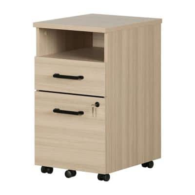 Zelia Soft Elm Decorative Vertical File Cabinet with 2-Drawers