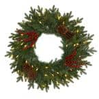 24 in. Green Pre-Lit Pine Artificial Christmas Wreath with 50 Warm White LED Lights Berries and Pine Cones