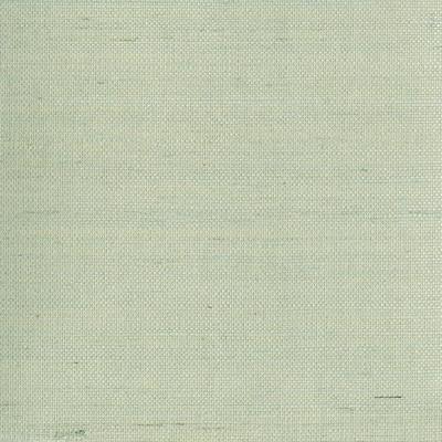 Mugen Light Green Grasscloth Peelable Wallpaper (Covers 72 sq. ft.)