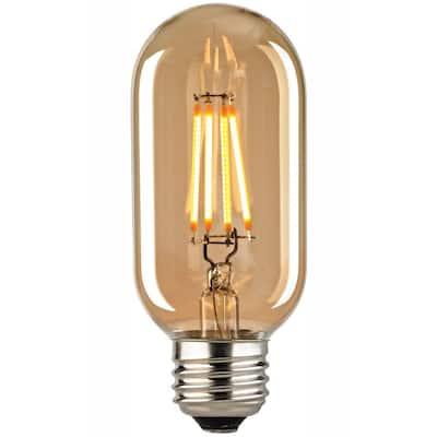 Filament Medium LED Bulb With Light Gold Tint