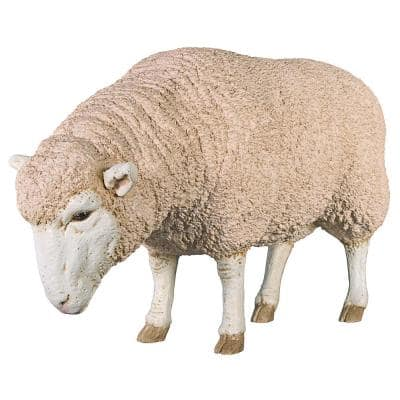 23 in. H Merino Ewe Head Down Life Size Sheep Statue