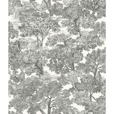 Spinney Black Toile Black Wallpaper Sample