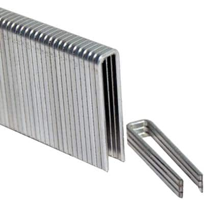 1-1/2 in. Leg x 1/4 in. Crown 18-Gauge Electro-Galvanized Flooring Staples (5,000-Pack)