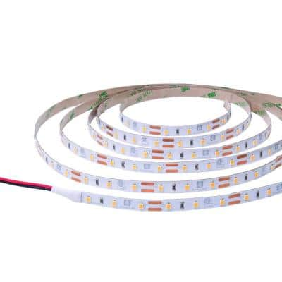 RibbonFlex Pro 16.4 ft. 12-Volt Tape Strip Light 60 LEDs/m Soft White (2700K)