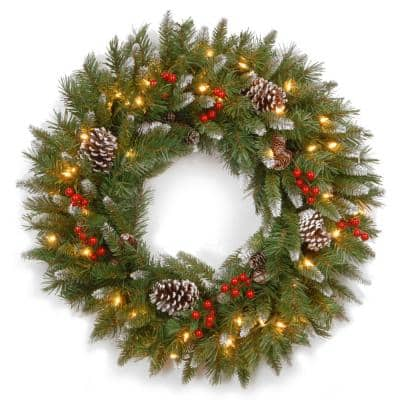 Frosted Berry 24 in. Artificial Wreath with Clear Lights