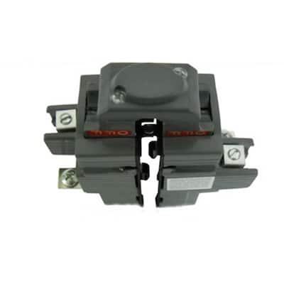100 Amp 1-1/2 in. 2-Pole Pushmatic Replacement Circuit Breaker