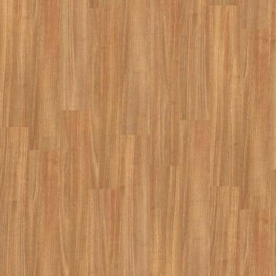 Gallantry 20 mil Sapling 6 in. x 36 in. Glue Down Vinyl Plank Flooring (44.56 sq. ft./case)
