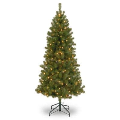 7 ft. Canadian Grande Fir Artificial Christmas Tree with Clear Lights