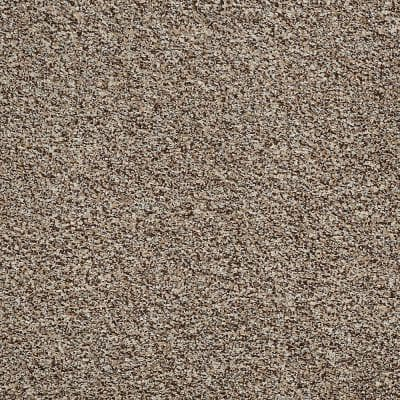8 in. x 8 in. Texture Carpet Sample - Toulon - Color Thornwood