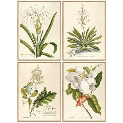 White Flower Paper Prints Wall Art in Wood Frame Designed by Henrik Dybdahl 28 in. x 39 in. (Set of 4)
