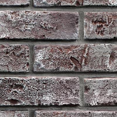 Chicago Brick 12 in. x 12 in. Brick Veneer Siding Sample