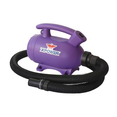 Do-It-Yourself Purple Home Pet Dryer