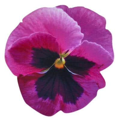 Pansy Collection 16 in. x 15 in. Fuchsia Purple Polyester Placemat (Set of 2)