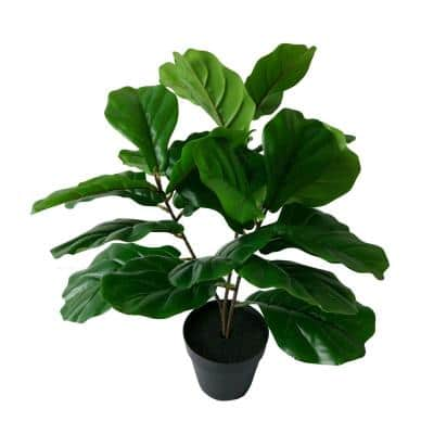 24 in. Potted Fiddle Dark Green Leaf Tree
