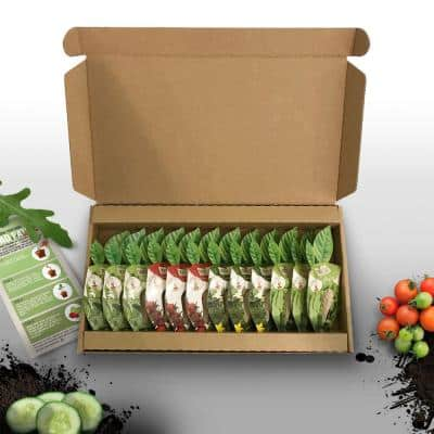 Seed Pods Salad Patch Set