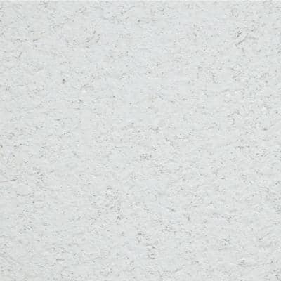 2 ft. x 2 ft. Millennia White Shadowline Tapered Edge Lay-In Ceiling Tile, carton of 12 (48 sq. ft.)