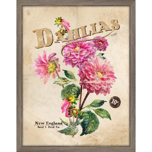 Melissa Van Hise Seed Packet Dahlia Framed Giclee Vintage Art Print 15 In X 19 In Ip11363 The Home Depot