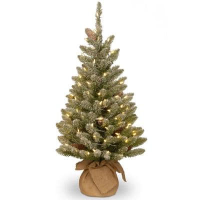 36 in. Snowy Concolor Fir Tree with Battery Operated LED Lights