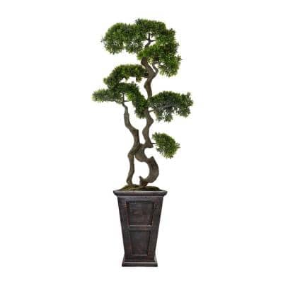 64 in. Bonsai Tree in Fiberstone Planter