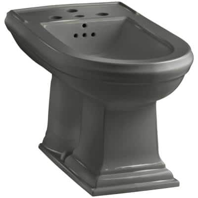 Memoirs Elongated Bidet in Thunder Grey