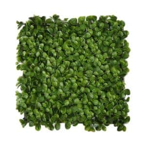 19.68 in. x 19.68 in. Green Artificial Wall Panels (Set of 4)