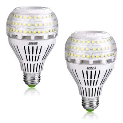 250-Watt Equivalent A21 Non-Dimmable 270° Omni-Directional LED Light Bulb Daylight in 5000K (2-Pack)