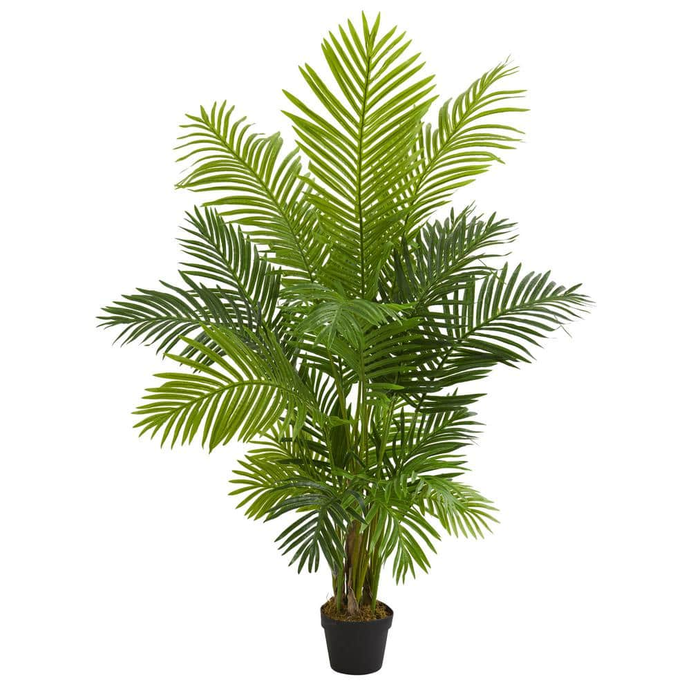 Nearly Natural Indoor 5 Ft Hawaii Palm Artificial Tree 5589 The Home Depot