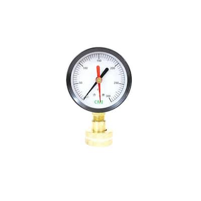 0 - 300 psi 2.5 in. Dial 3/4 in. Brass FNPT Water Test Gauge (10-Pack)