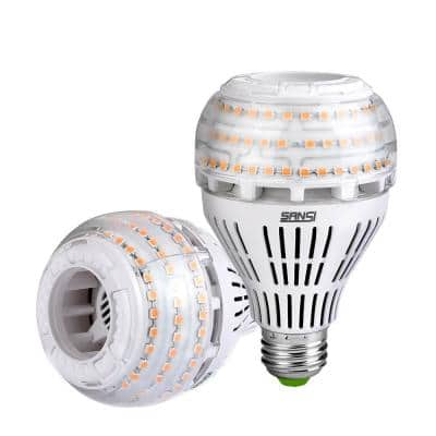 250-Watt Equivalent A21 Dimmable 270° Omni-Directional LED Light Bulb Soft Warm White in 3000K (2-Pack)