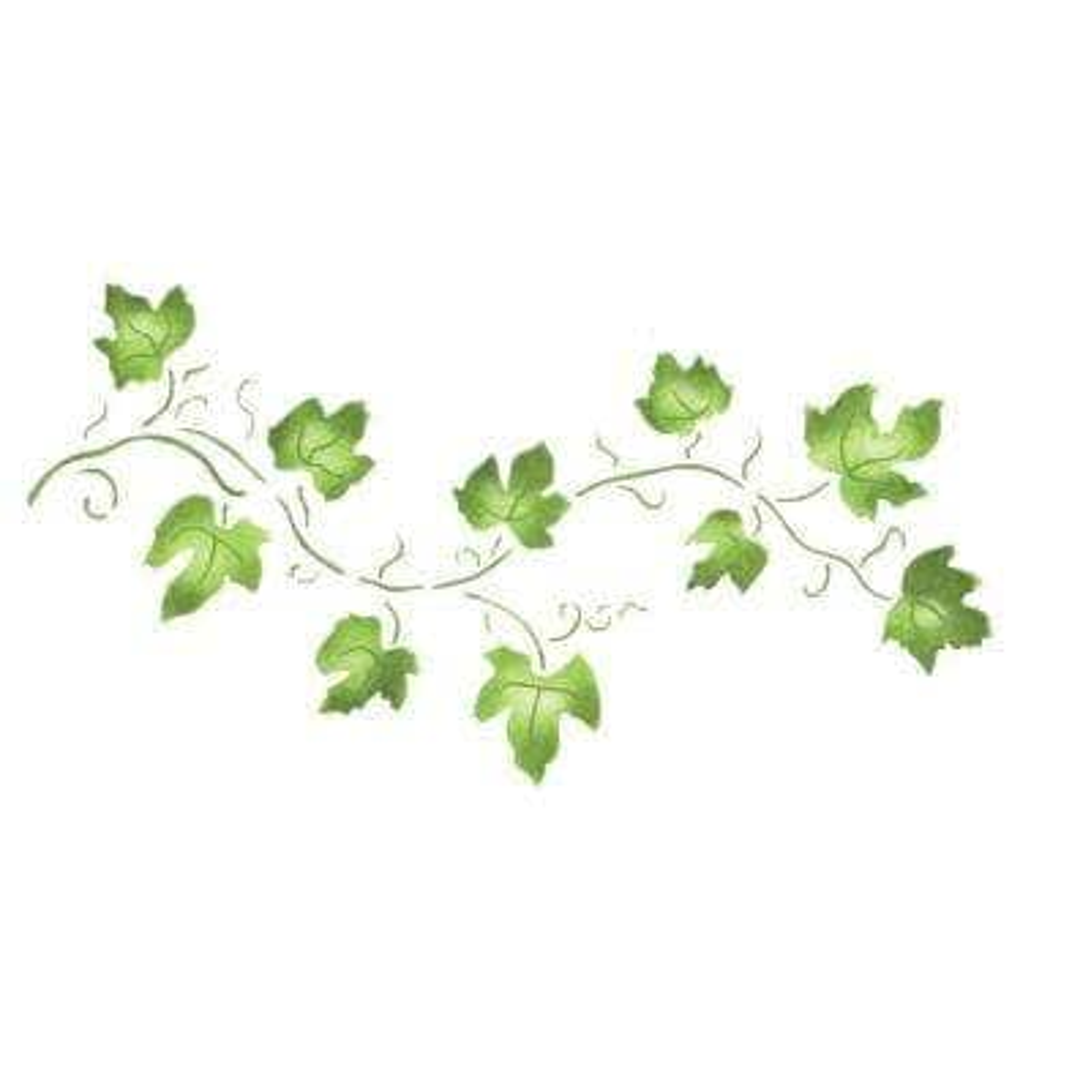 Small Ivy Vine Wall Stencil
