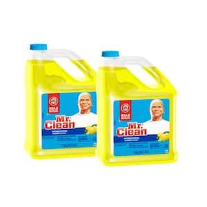 128 oz. Summer Citrus Scent Multi-Surfaces Antibacterial All-Purpose Cleaner (2-Pack)