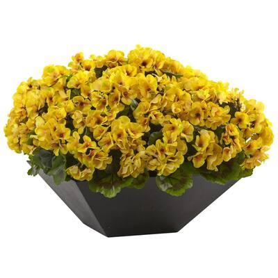 Geranium with Black Planter UV Resistant (Indoor/Outdoor)