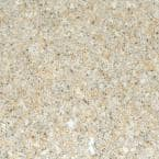 4 in. Solid Surface Technology Vanity Top Sample in Ginger